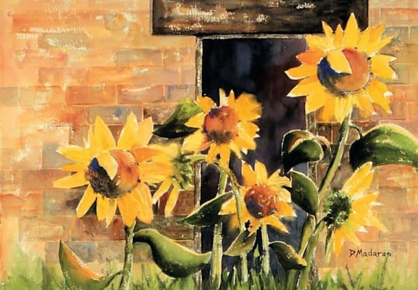 Slow Time | Southwest Art Gallery Tucson | Madaras