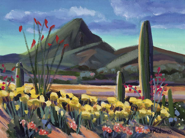 Hugh's Vista | Southwest Art Gallery Tucson | Madaras