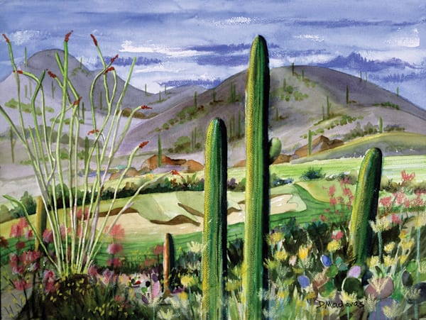 Flowers at Starr Pass   Southwest Art Gallery Tucson