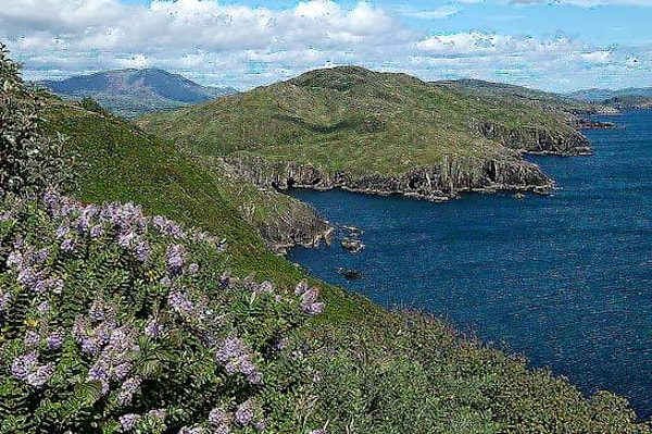 Beara Coast View Ireland