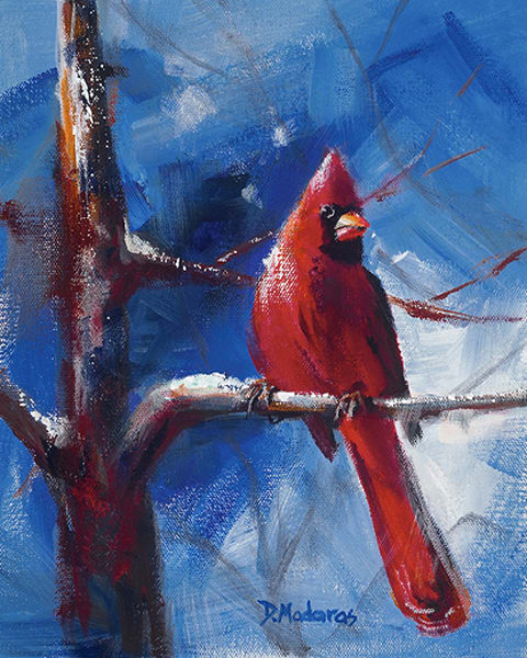 Cardinal in Winter Holiday Card | Southwest Art Gallery Tucson