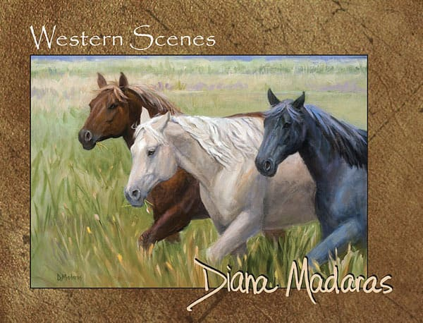 Western Scenes Box Card Set | Horses