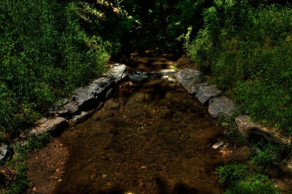 Fine Art Photographs of Sligo Creek by Michael Pucciarelli