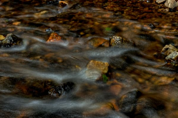 Waters of Sligo Creek Fine Art Photographs by Michael Pucciarelli