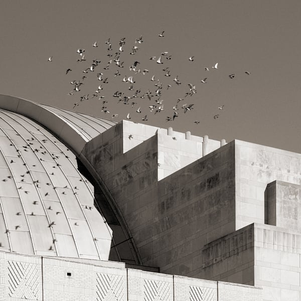 Union Terminal With Birds Photography Art | Tom McFarlane Photography