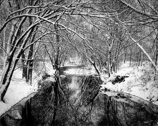 Jeff Schemmer Photography : gallery406