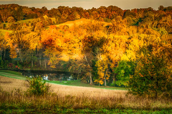 Granogue Pond Fine Art Photograph | JustBob Images