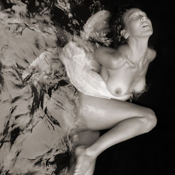 Washing Off Of Wings Photography Art | Tom McFarlane Photography