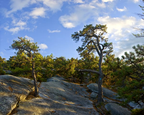 Climbing to the Sky - Mohonk Preserve - New Paltz - New York