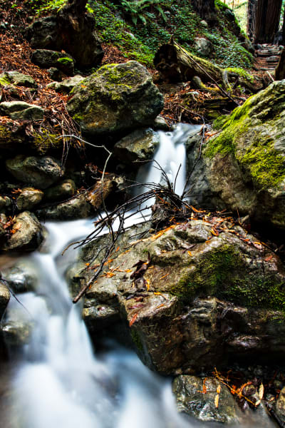 Waterfall At Hare Creek Trail in Limekiln State Park Photograph for Sale as Fine Art