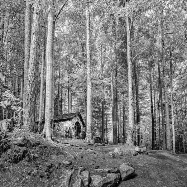 Chapel in the Woods - Vivario - Corsica - France