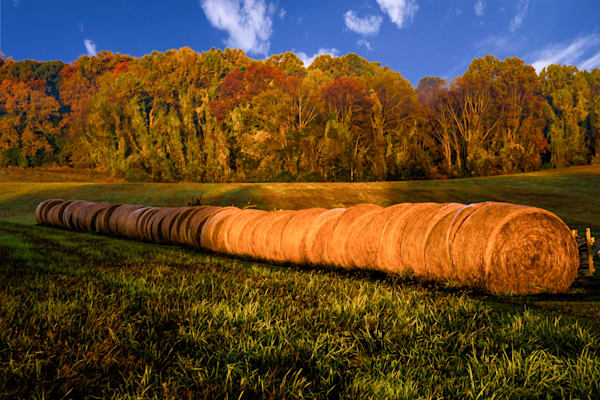 Hay Bales Fine Art Photograph | JustBob Images