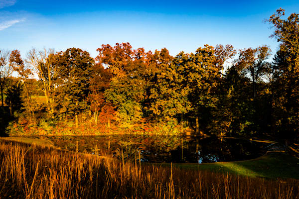 Granogue Pond #2 Fine Art Photograph | JustBob Images
