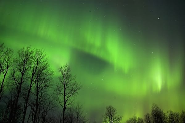 Minnesota Northern Lights