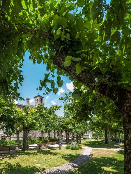 Park and Church Tower - Radicofani - Italy