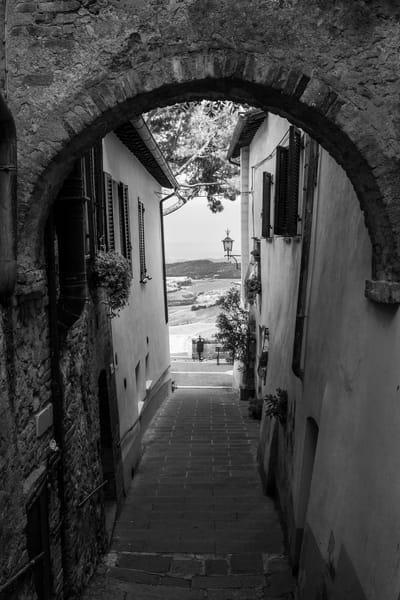 To the Fields - Montepulciano - Italy B&W