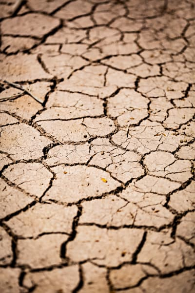 Dry Cracked Trail At The Salton Sea Photograph for Sale as Fine Art