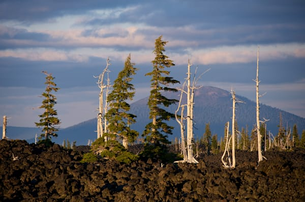 black butte viewed from the lava fields on mckenzie pass.