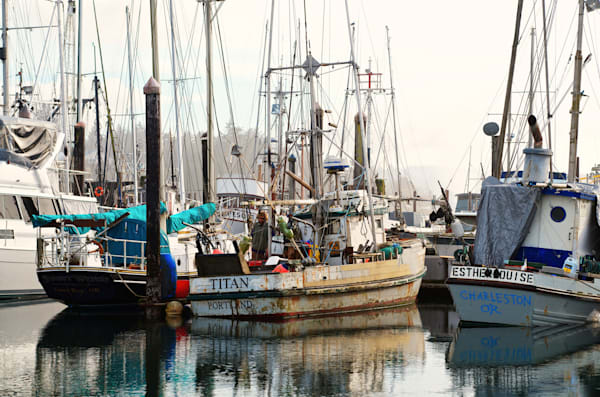 photo of fishing boats in charleston, oregon