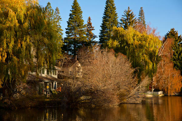 towards the end of fall color on mirror pond in bend, oregon