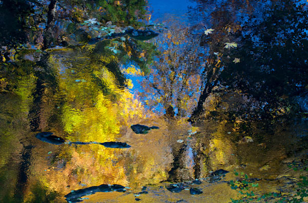image of reflected fall colors on a stream just outside of eugene, oregon