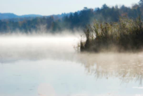 """""""Rising Mist"""""""