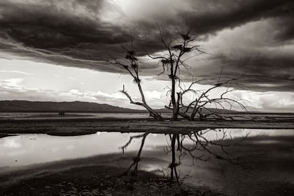 Surreal Fine Art Salton Sea Landscape, Prints