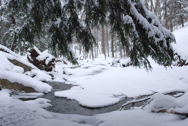 """""""Snowy Serpentine"""""""