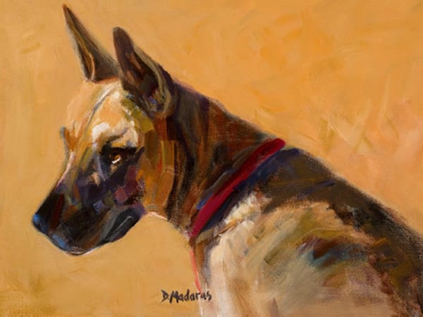 Watchdog | Southwest Art Gallery Tucson | Madaras