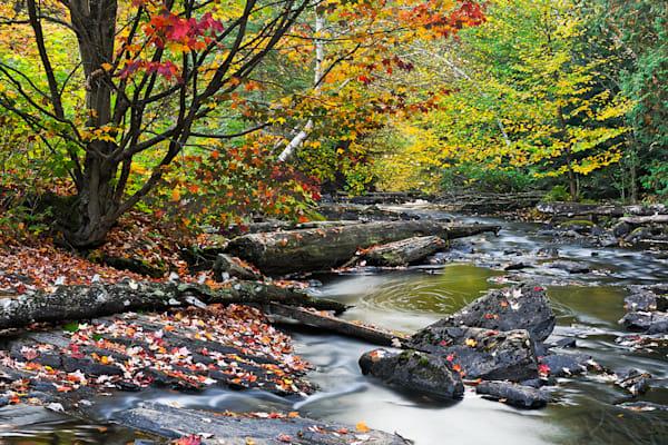 Fall Along the Madawaska