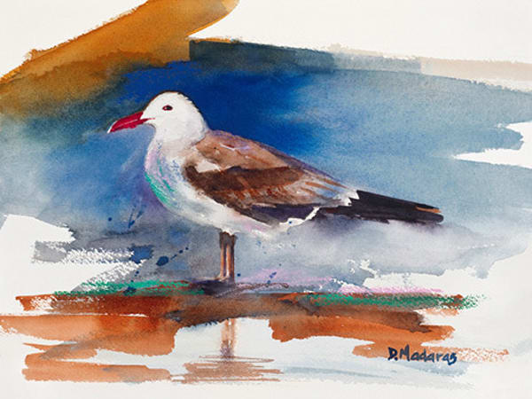 One Seagull | Southwest Art Gallery Tucson | Madaras