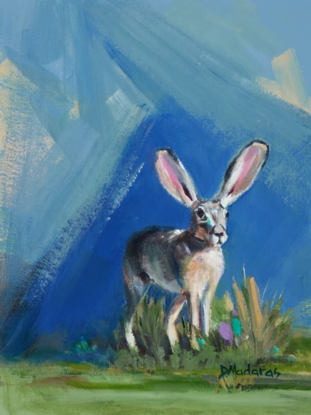 Jack Rabbit Knoll   Southwest Art Gallery Tucson   Madaras