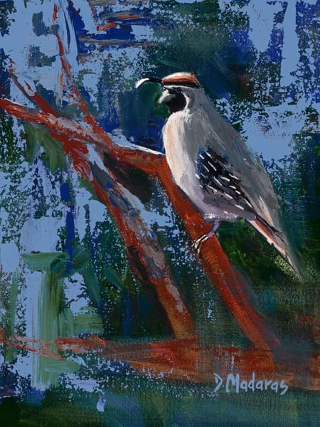 Quail in the Thicket | Southwest Art Gallery Tucson | Madaras