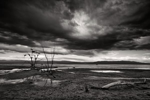 Dramatic Black & White Desertscape Print of the Salton Sea