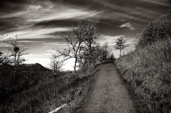 photo of mount pisgah hiking trail towards the beginning of the hike