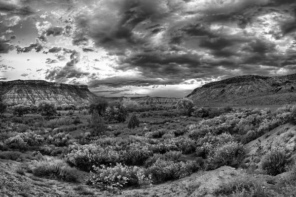 Autumn Sunset - Rockville - Utah - BW