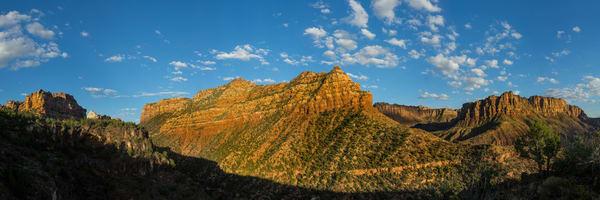 Grapevine Spring - Left Fork North Creek - Zion National Park - Utah