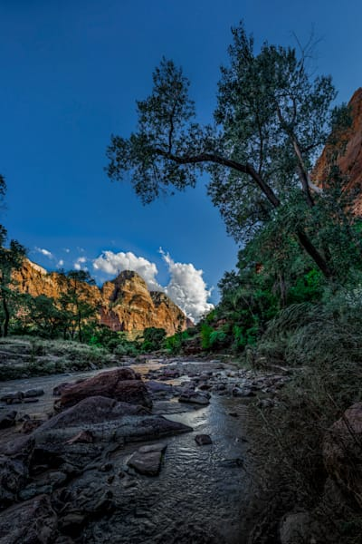 Zion Canyon and Virgin River - Emerald Pools Trail - Zion National Park - Utah