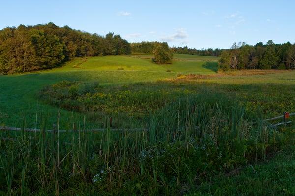 Woodbine Farm Early Morning - Sharon Springs, New York