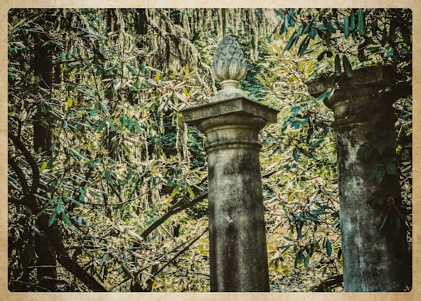 Columns   Greenwood Gardens Photography Art | David Frank Photography