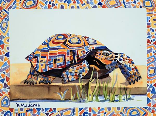 Spike | Southwest Art Gallery Tucson | Madaras