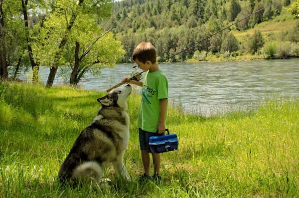 BOY,DOG