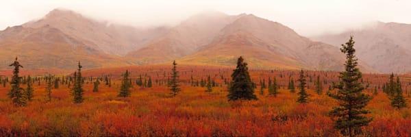 Autumn Alaska Photography Art | Scott Cordner Photography