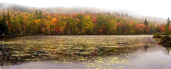 Moose Pond