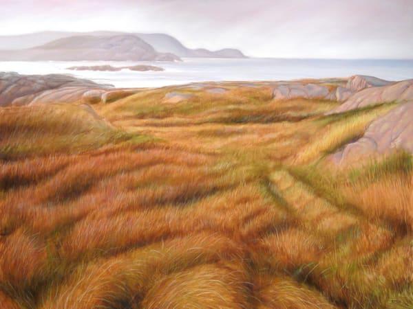 Fogo grass, Newfoundland