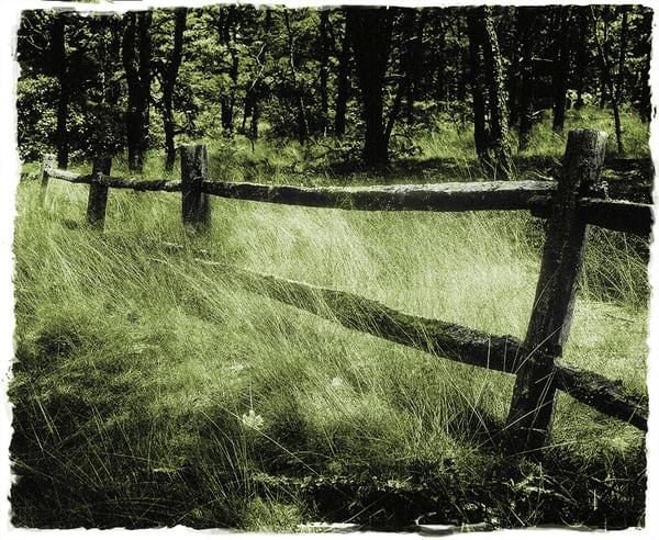 Old Fence Mono