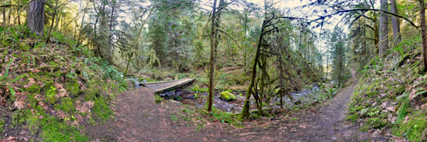 a hiking trail with bridge over creek just west of oakridge, oregon.