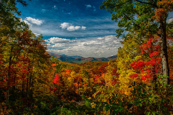 Roaring Fork Overlook Fine Art Photograph | JustBob Images
