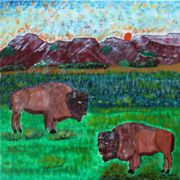 American Bison by David M