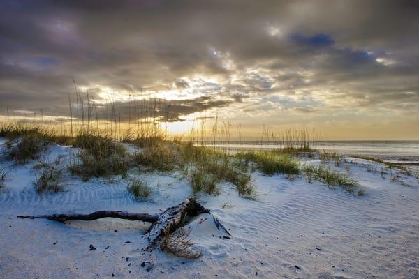 Tybee Beach Dunes